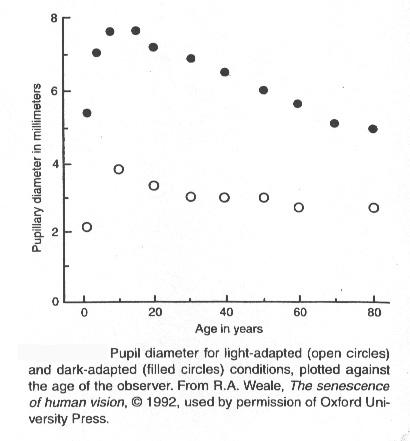VCSE - Vizszintes tengelyen az ember életkora, függőlegesen az átlagos pupillaátmérője. Természetesen egyes emberek a feltüntetett értékeknél kisebb vagy nagyobb értékekkel is bírhatnak, ezek csak az átlagok egy adott életkorban. Az üres körök a nappali világossághoz, a sötét, kitöltött körök az éjszakai sötéthez alkalmazkodott átlagos pupillaátmérők. - R. A. Weale, The senescence of human vision, Oxford University Press