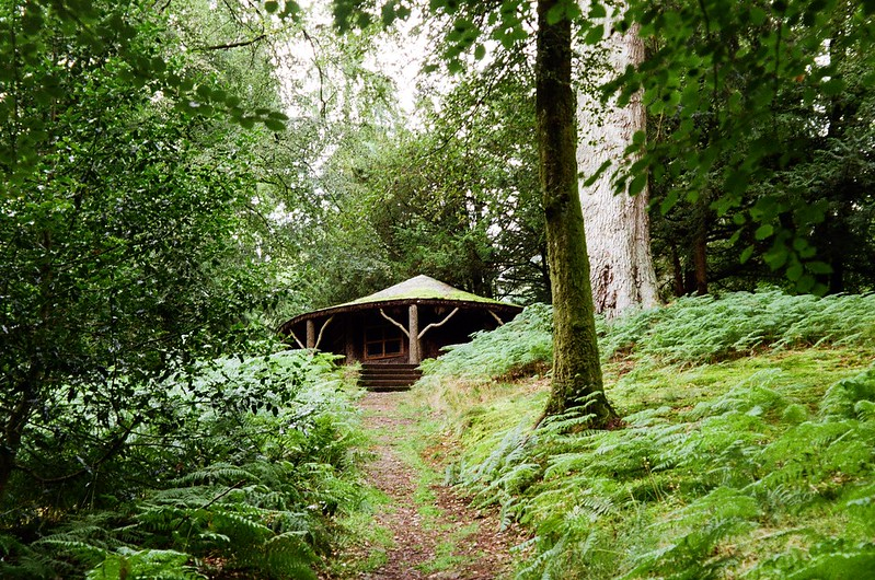 Hut in the woods