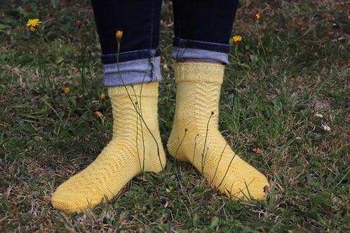 Mister Grace's socks