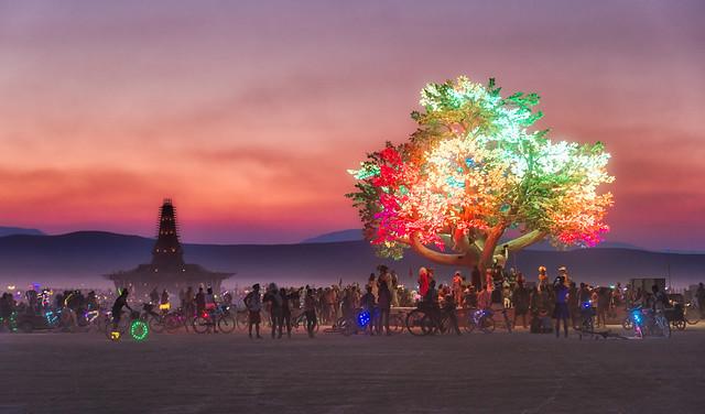 Burning Man Tree
