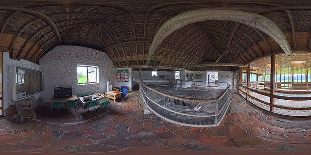 Bignor Roman Villa - West Sussex