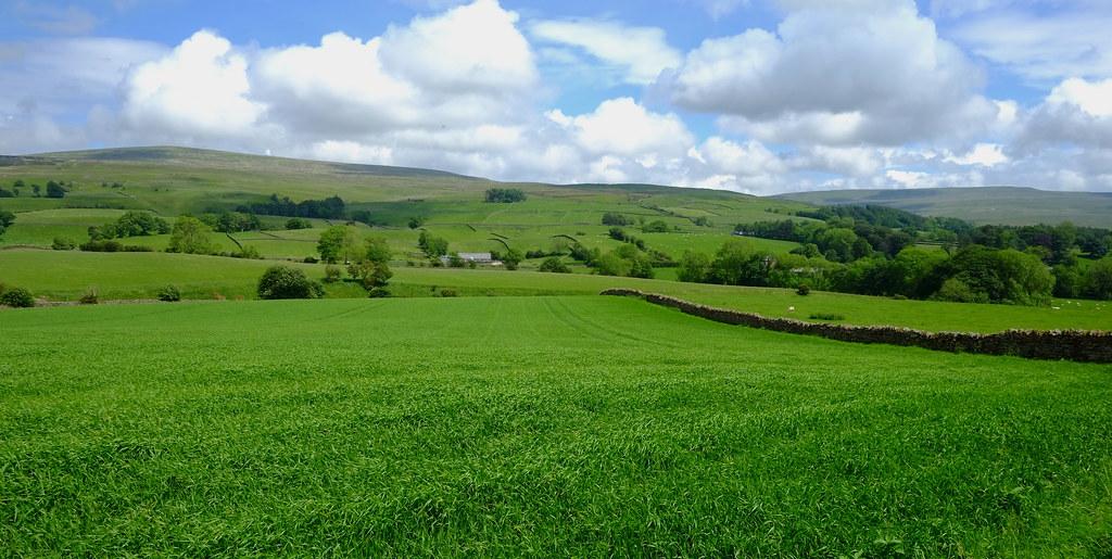Green & Beautiful Land