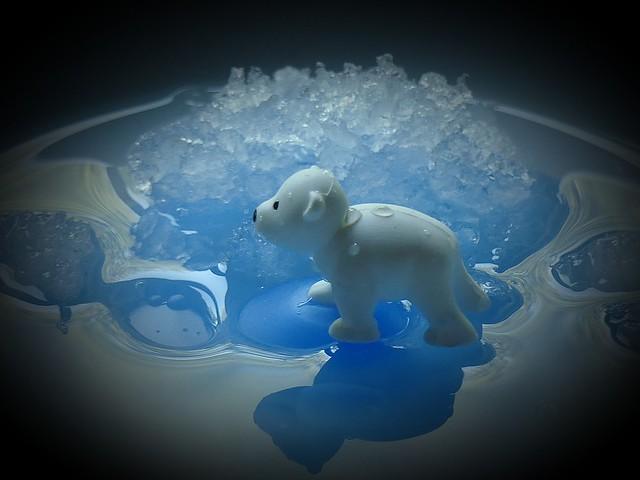Ice and Ice Bear  ©️BrigitteE
