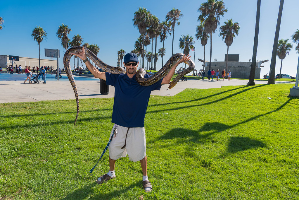 Jesse the Snake Man with His Snake Pandora at Venice Beach, CA