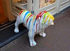 Kleurrijke Bulldog / Regalo Gallery / Amsterdam