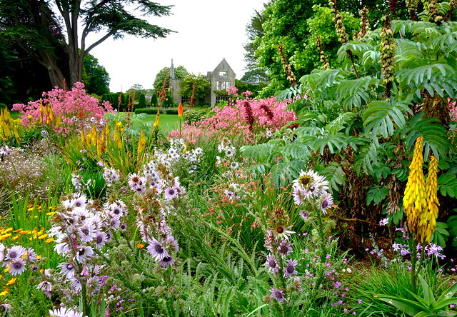 Nymans Summer Colours