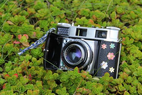 Camera of the Day - Kodak Retina IIIC (Big C Type 028) - Just because! ;)