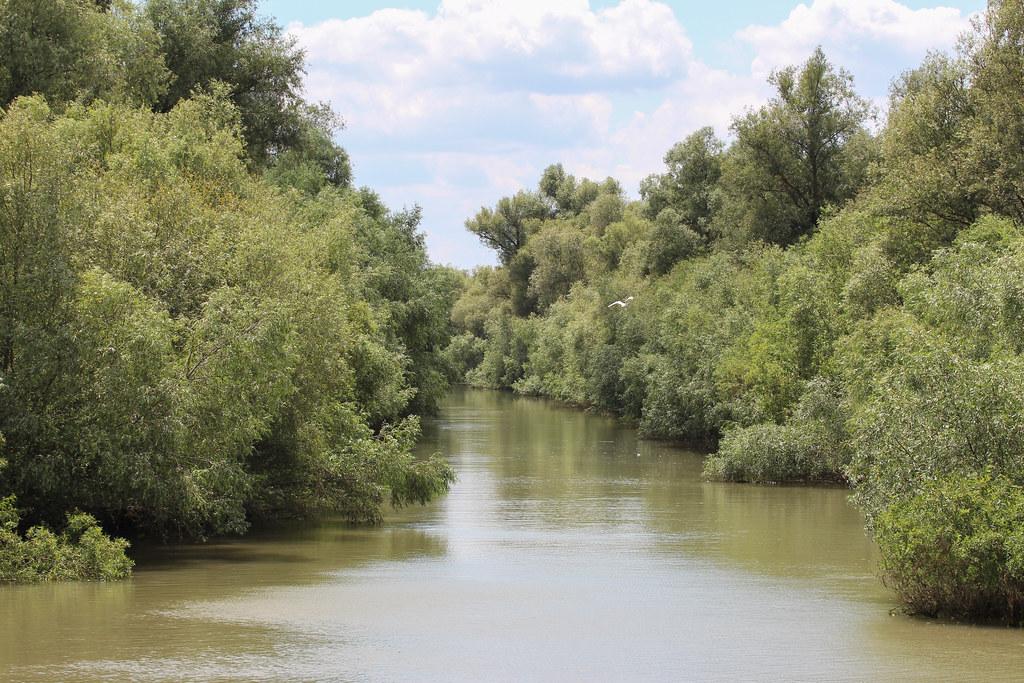 Tonavan suisto, Tulcea