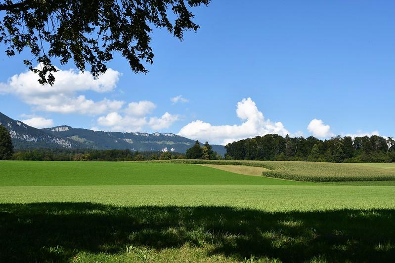 Landscape Feldbrunnen village 25.08 (2)