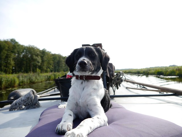 Sailing with Beike