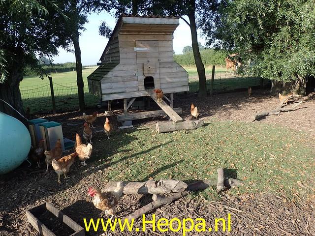 2019-08-21         De IJzer 2e dag Diksmuide (34)