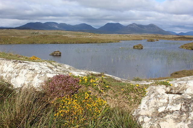 A small lake on the Bog Road near Roundstone, Connemara, Co Galway, Ireland