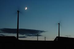 Night Winds