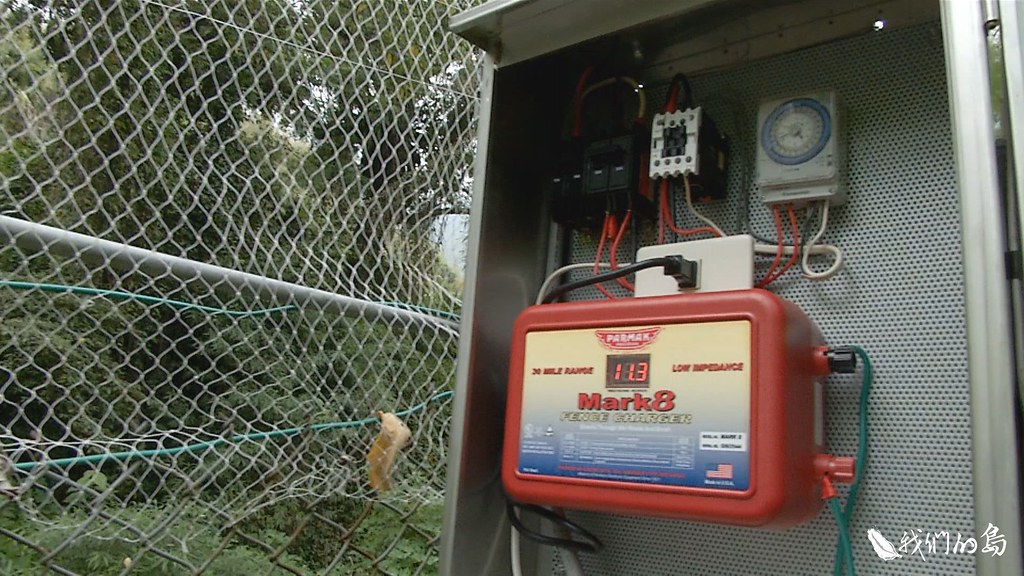 研究團隊呼籲農民,要以嚇阻為目標,改用高電壓、低電流的電牧器作為電源。