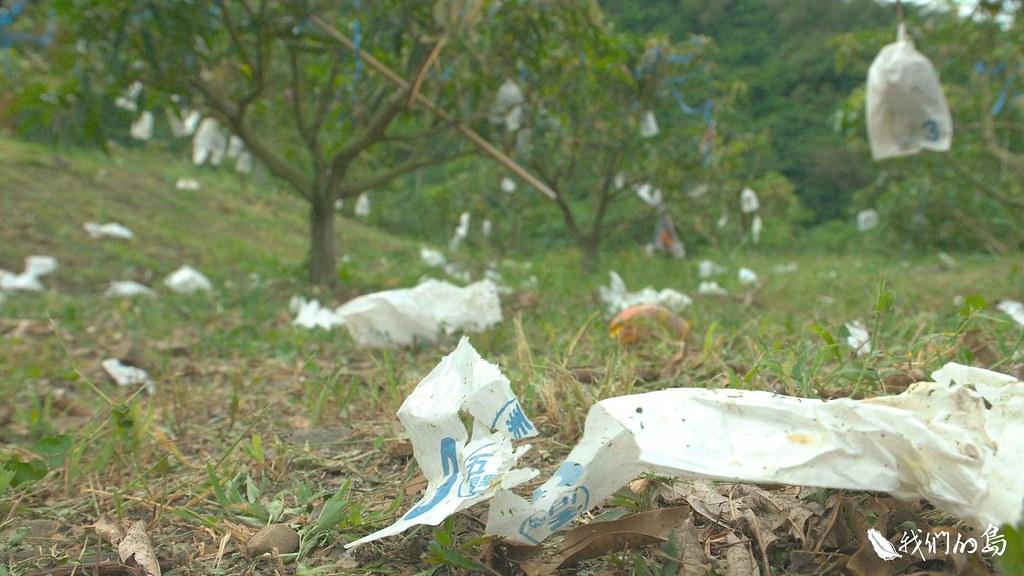 野生動物不時出沒,有時會闖入果園,當中又以獼猴帶來的影響,最讓農民困擾。