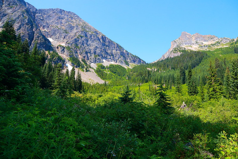 IMG_2590 Easy Pass Trail, Okanogan-Wenatchee National Forest