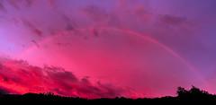 Roter Regenbogen