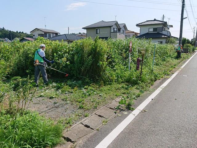 南相馬・小高で草刈りボランティア(援人 2019年 0823便)