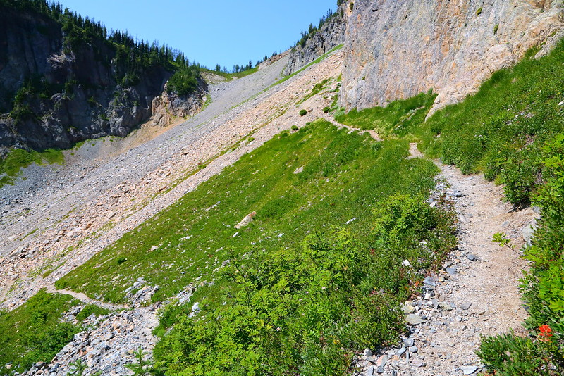 IMG_2610 Easy Pass Trail, Okanogan-Wenatchee National Forest