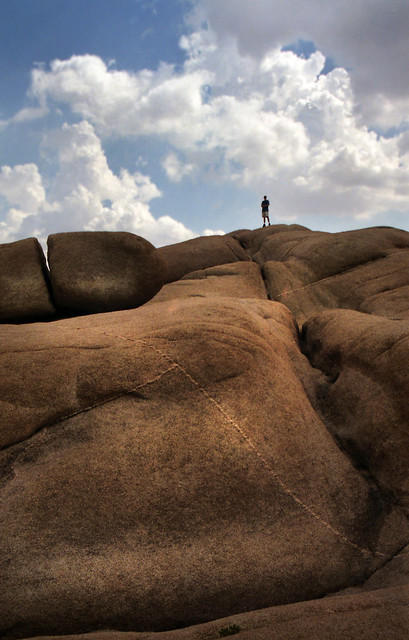 Jumbo Rocks in Joshua Tree N.P.
