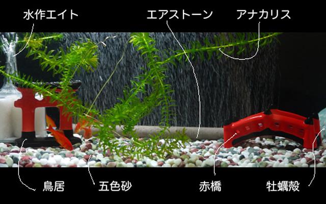 スドー 陶器製アクセサリー 鳥居 赤橋 雪見トーロー 金魚 和風水槽
