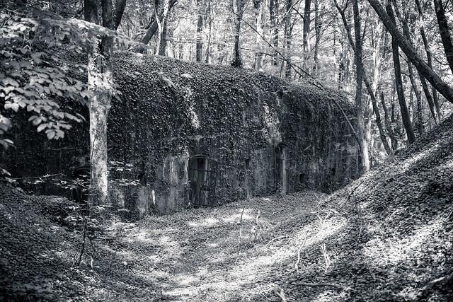 Fort de Guise...