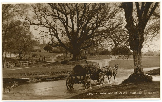 The ford, Moyles Court, Linwood, Ringwood, Hampshire