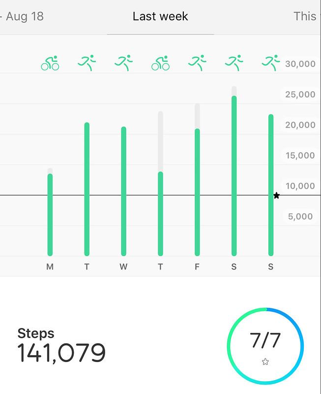141,079 steps