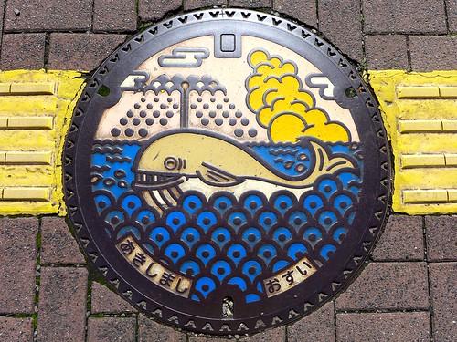 Akishima Tokyo, manhole cover (東京都昭島市のマンホール)