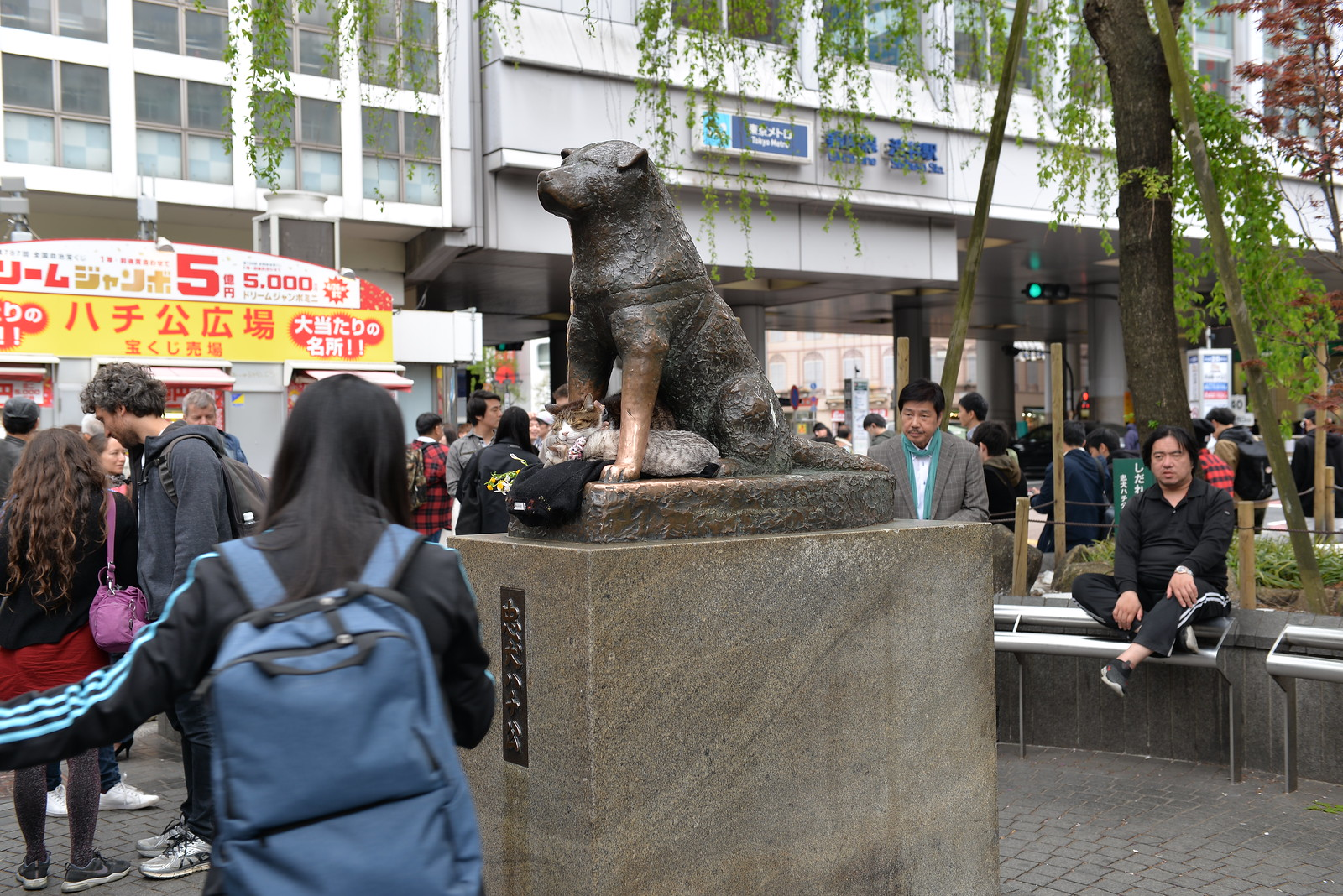 This Hachiko dog statue outside Shibuya station is very famous