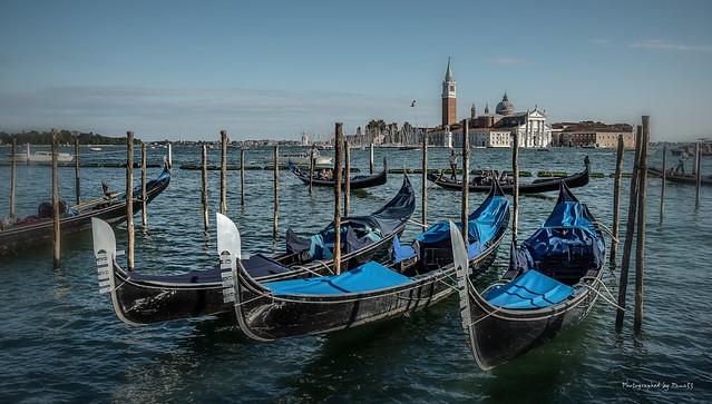 Venedig - Venecia - Venice (27)
