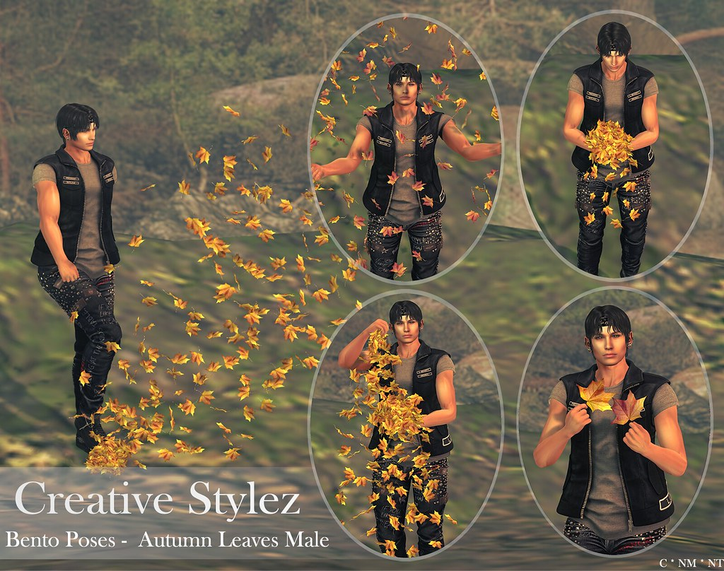 Creative Stylez – Bento Poses – Autumn Leaves Male