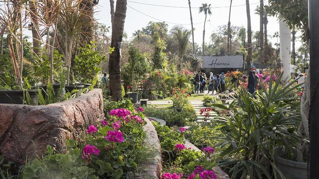 Inside Egypt's Spring Flowers Fair 2019
