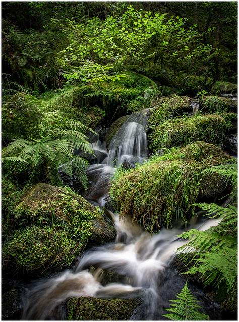 Wyming Brook, Peak District