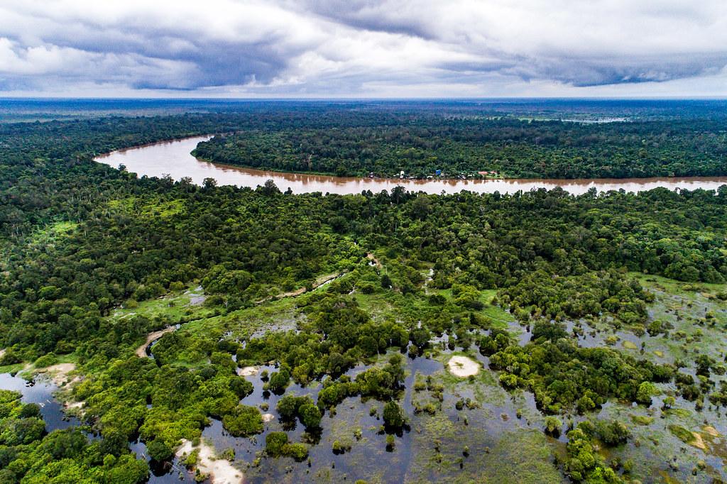加里曼丹中部雨林的泥炭地。Nanang Sujana攝,CIFOR提供(CC BY-NC-ND 2.0)