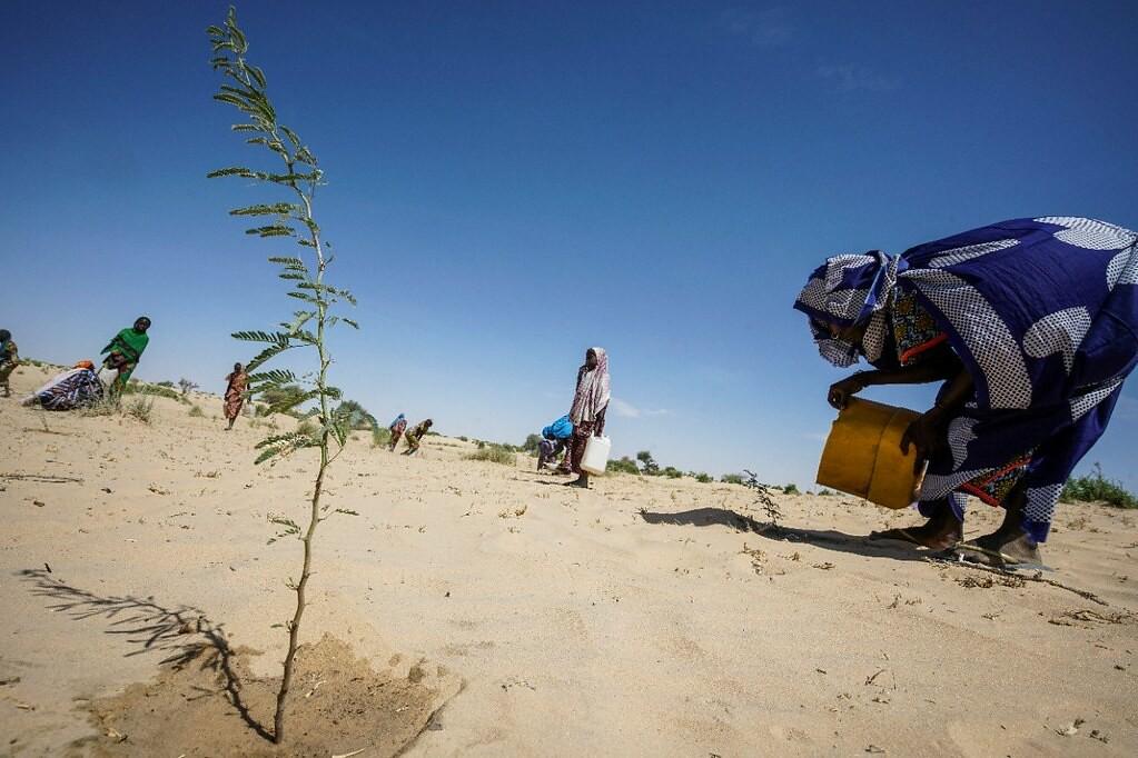 報告認為,氣候變遷導致的土地劣化究竟是導致衝突還合作仍然不明。圖片來源:UNDP