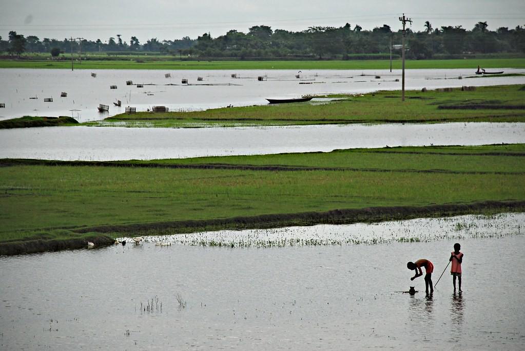 雨季洪患,對孟加拉的土地來說已是日常。Amir Jina攝(CC BY-NC-ND 2.0)