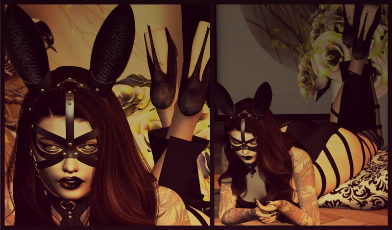 Good Bunny