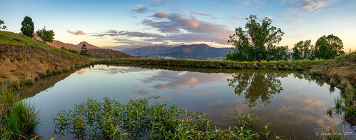 reflection water clouds sunrise dam farm australia nsw newsouthwales eungella tweedvalley panorama tree