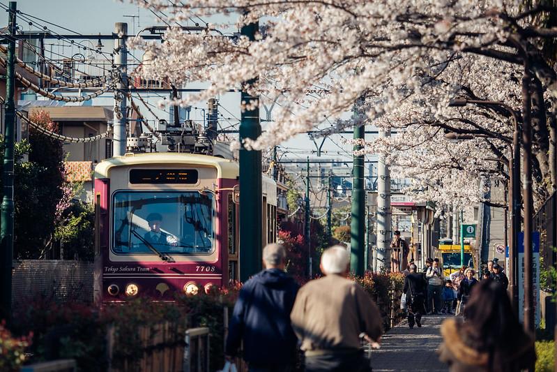 平成最後櫻花季|荒川二丁目