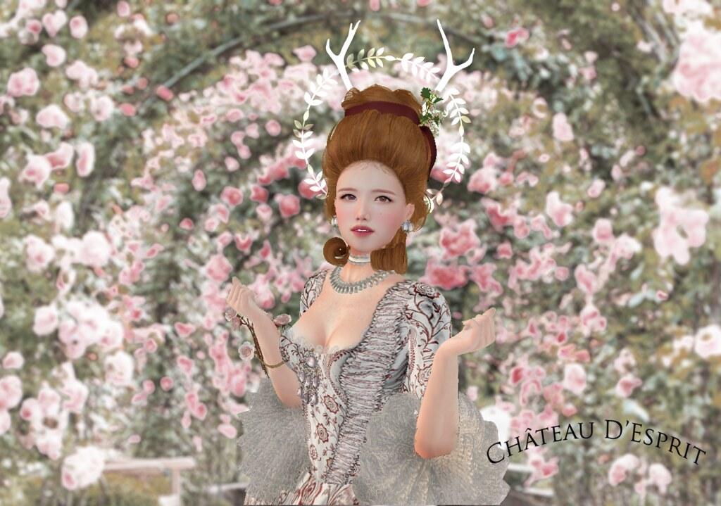 Rococo Suzette AD