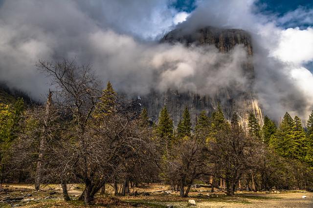 Cliche El Capitan, Yosemite National Park, California