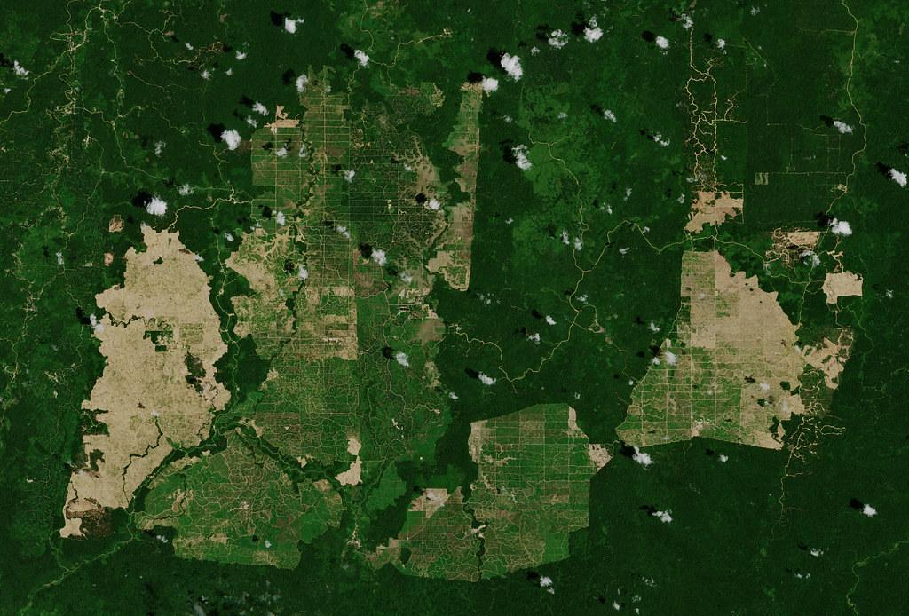 東加里曼丹空照圖,呈現被開墾成棕櫚園的雨林。照片來源:歐洲太空總署(CC BY-SA 2.0)