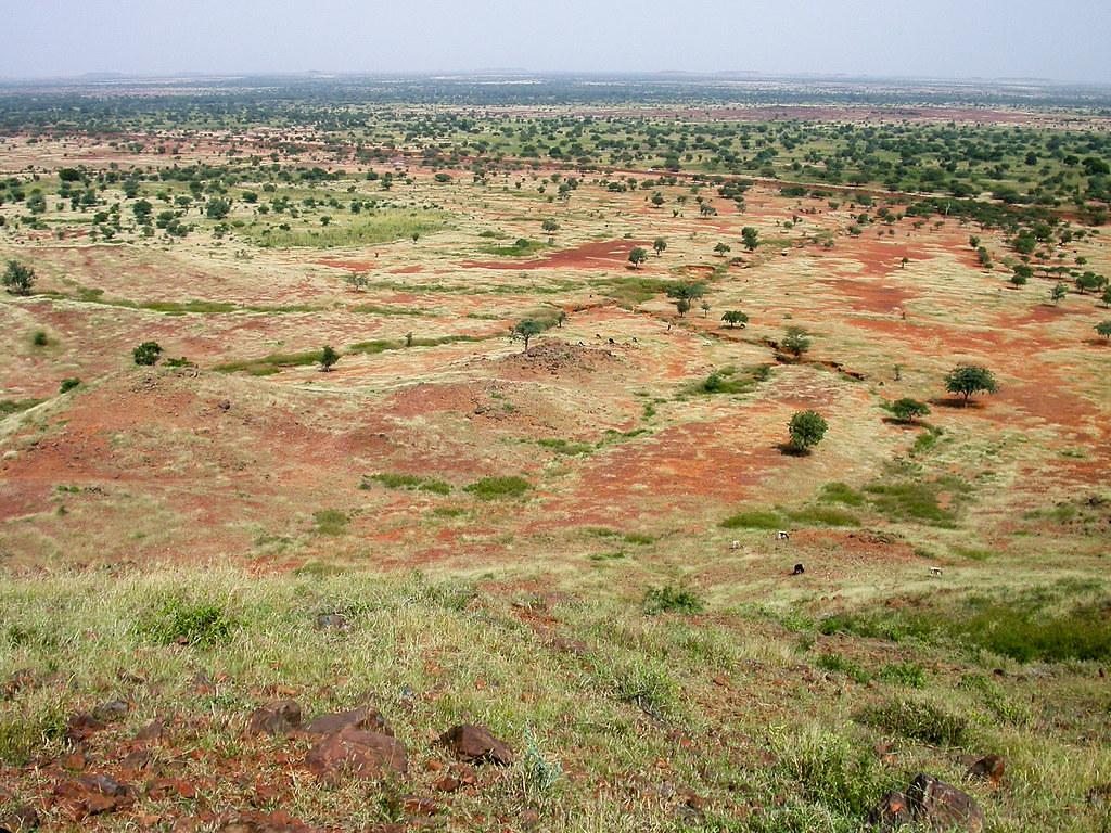 薩赫爾地區的乾地,此處位於非洲北部撒哈拉沙漠和中部蘇丹草原地區之間。Daniel Tiveau/CIFOR(CC BY-NC-ND 2.0)