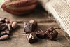 Chocolats Gélis