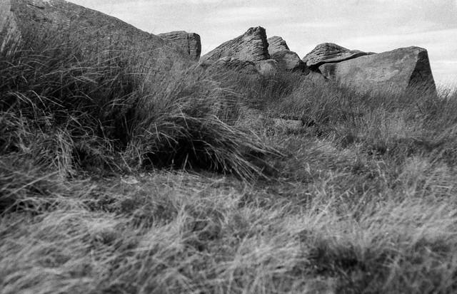 Moorland Grass and Miillstone Grit