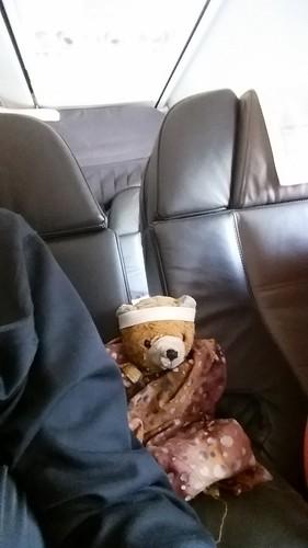 First Class Bear