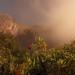 Fog Over Batur Crater