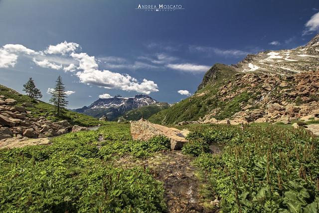 Piani della Rossa - Parco Naturale Alpe Devero (Italy)