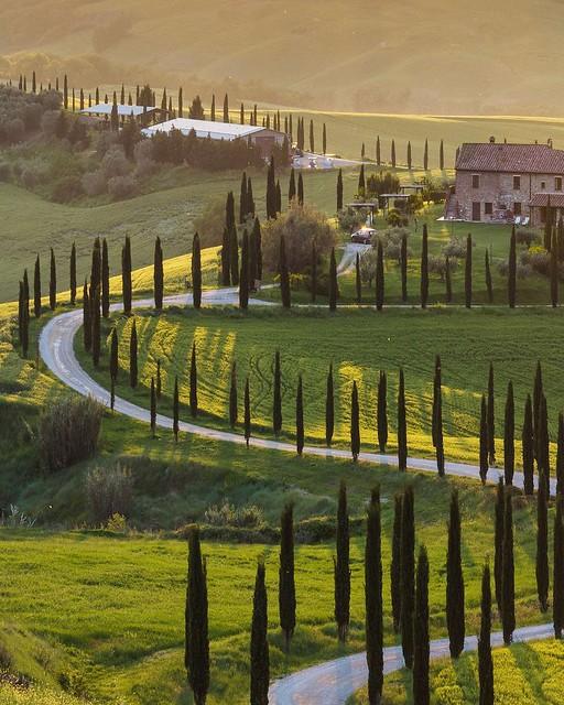 Summer morning like this! 😍 . . . #like #follow #share #comment #subscribe #castelnuovodellabate #montalcino #borghettomontalcino #tuscany #tuscanygram #italy #italy #italia #santantimo #valdorcia #travel #travelblogger #travelphotography #trav
